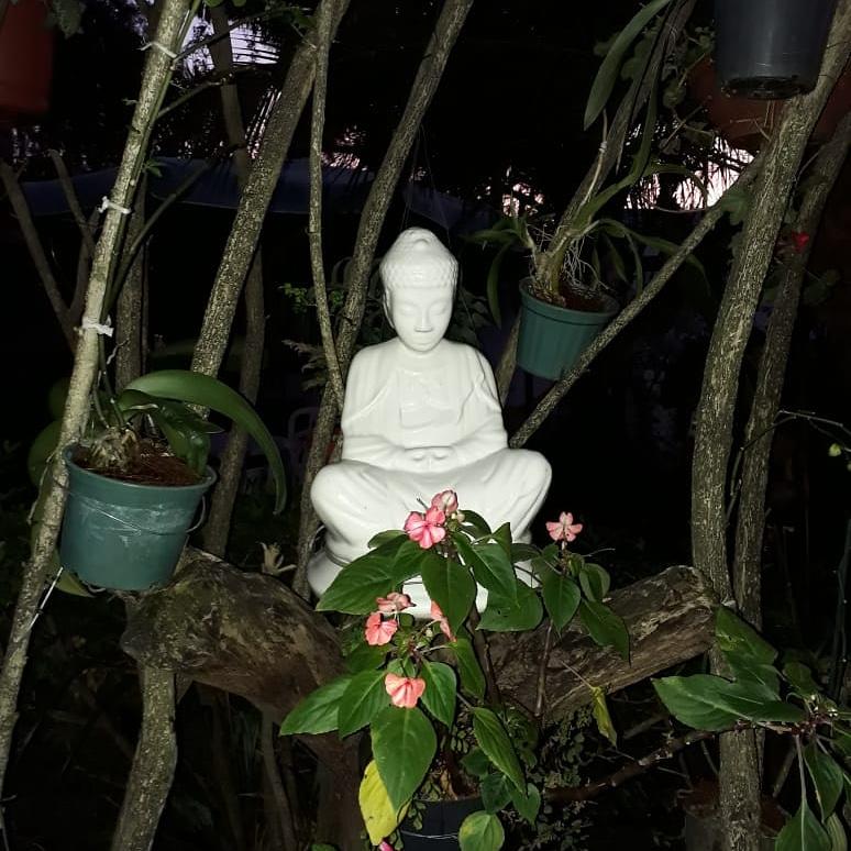 BUDISMO – MARTA SERRETTI